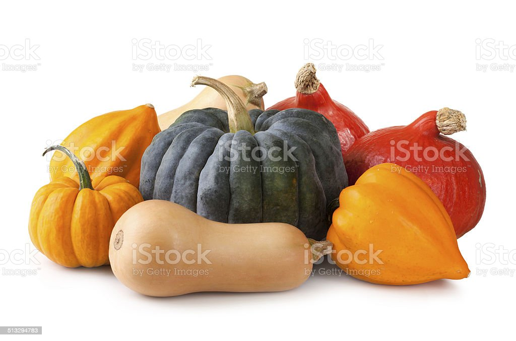Group of fresh squash stock photo