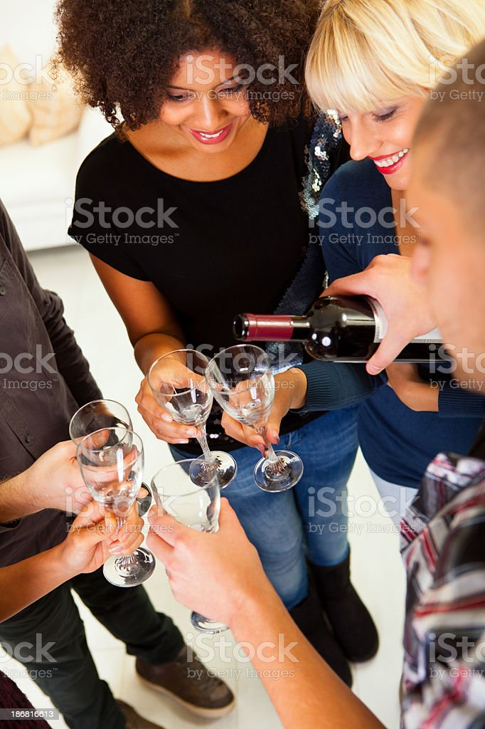 Group of friends drinking red wine royalty-free stock photo