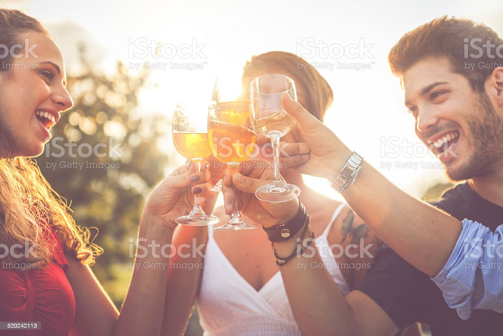 Group of friends drinking wine in cheerful moment stock photo