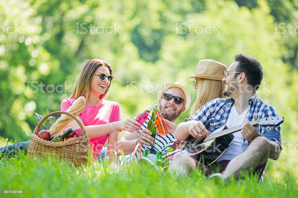 Group of  friends having a picnic stock photo