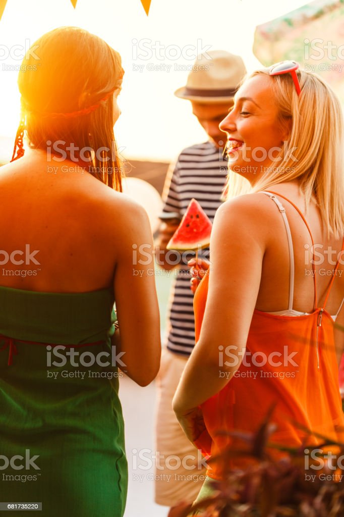 A group of friends having fun a party on the roof stock photo