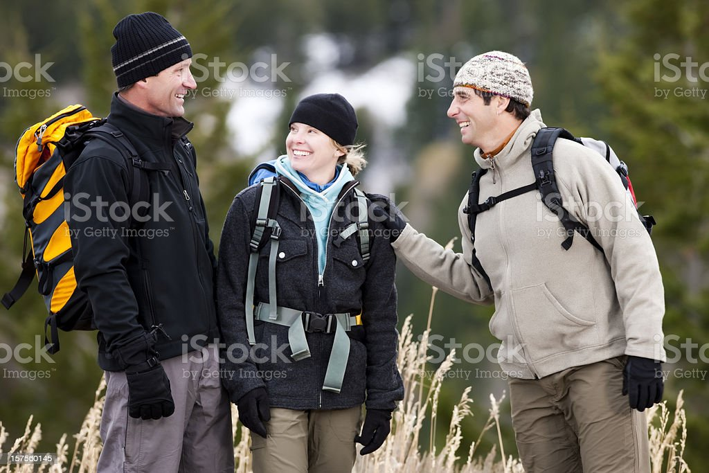 Group of Friends Hiking in Mountains royalty-free stock photo