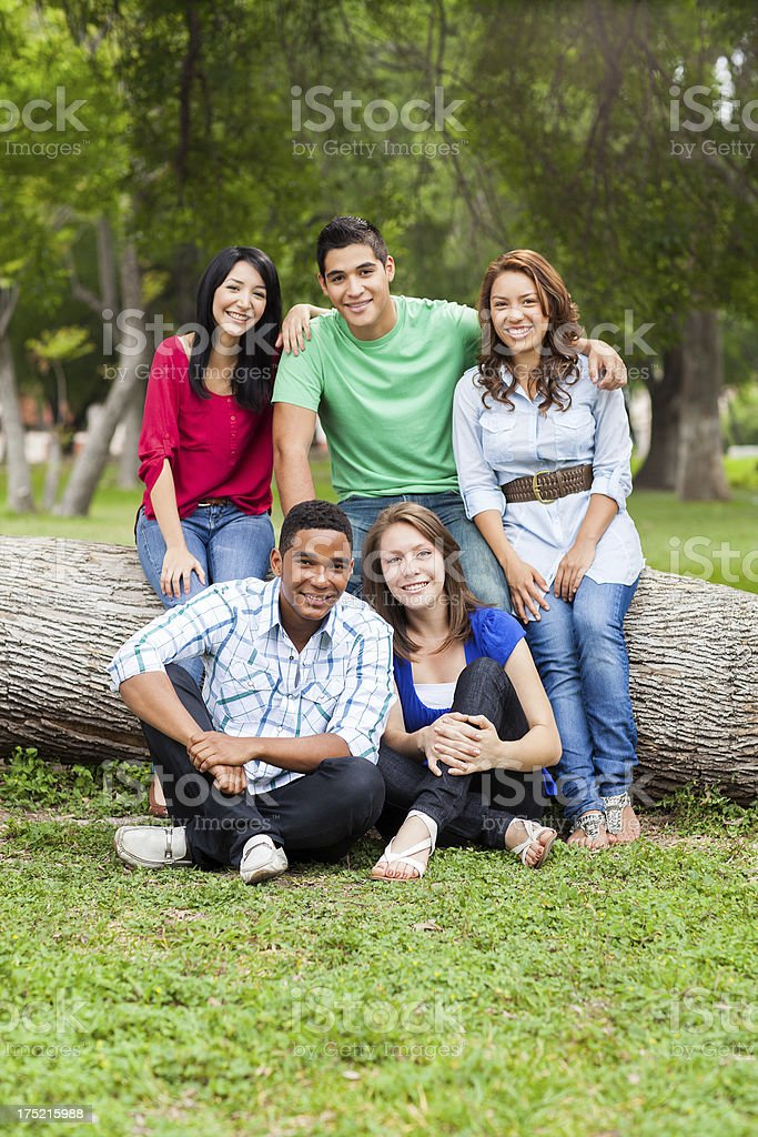 Group of friends royalty-free stock photo