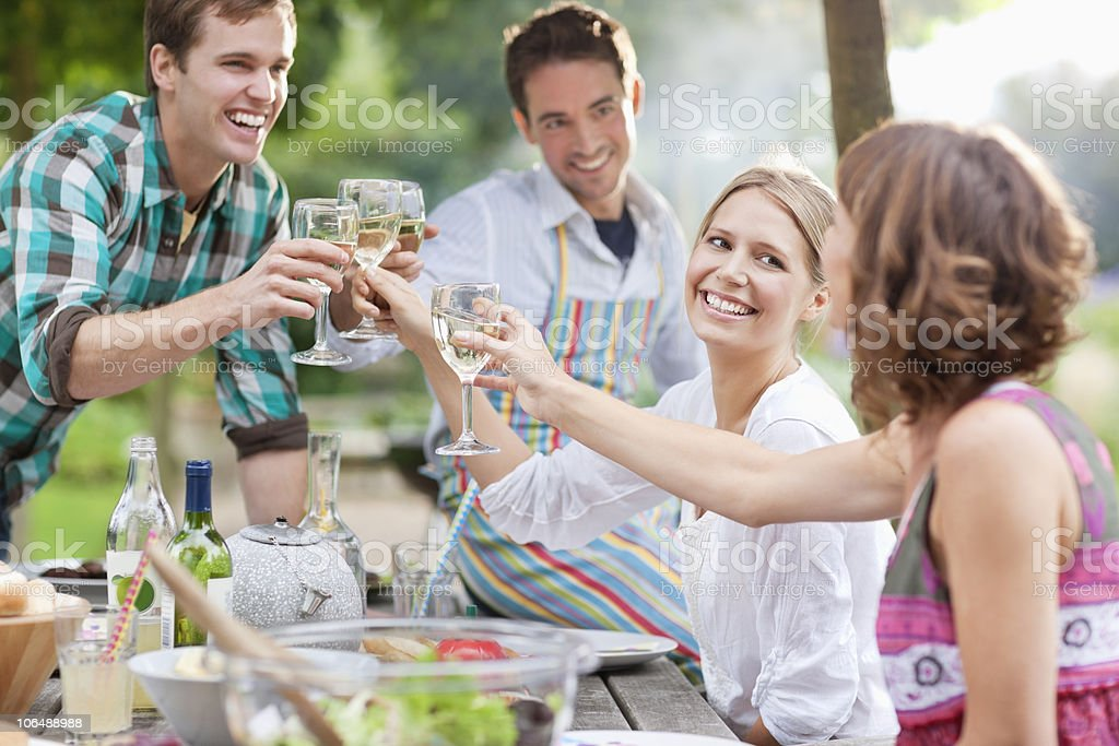 Group of friends toasting wine glasses at picnic royalty-free stock photo