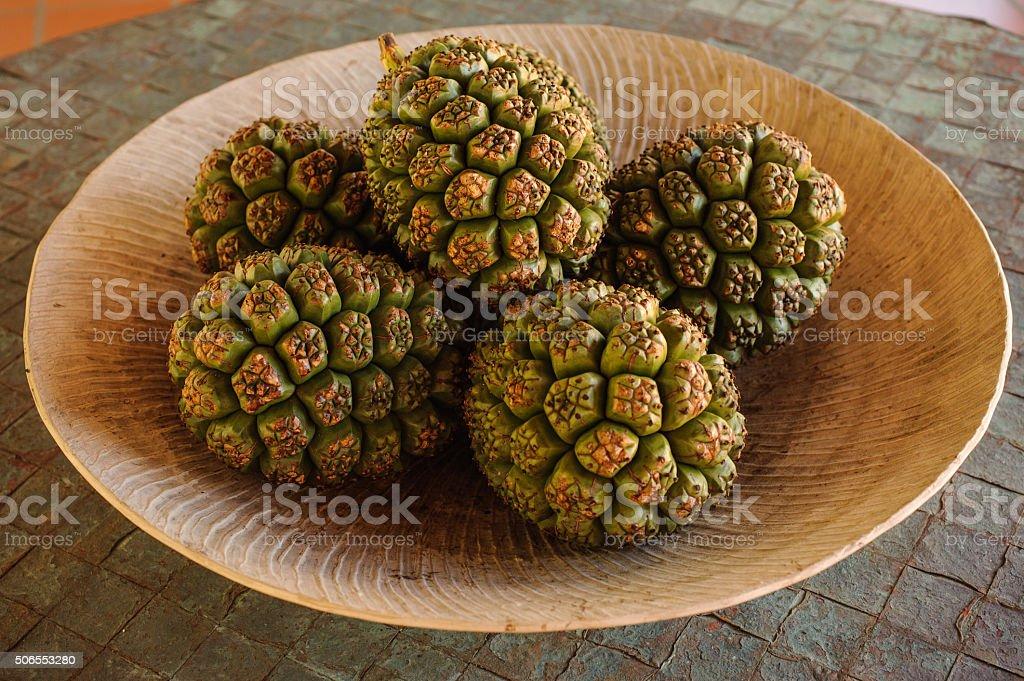 group of Fruits Of Pandanus Tree stock photo