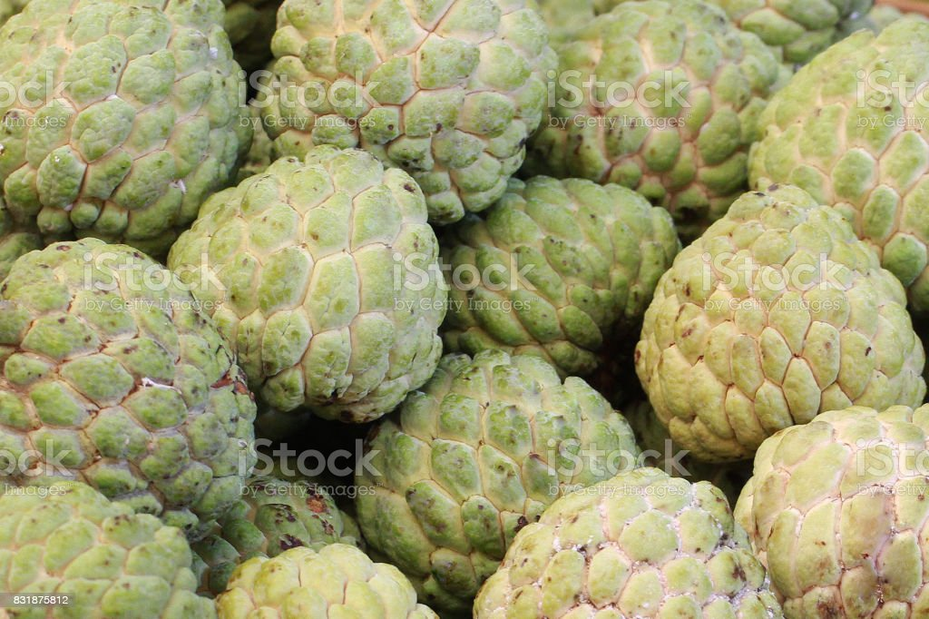 group of green fresh organic custard apple at asia fresh market, sweet taste fruit, tropical climate fruit, stock photo