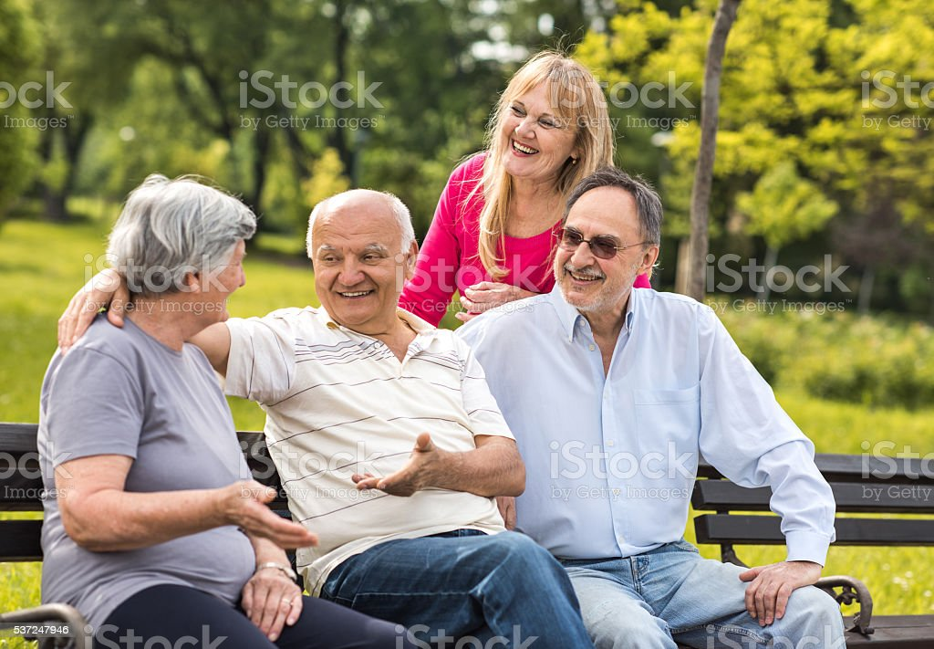 Group of happy senior friends communicating in the park. stock photo