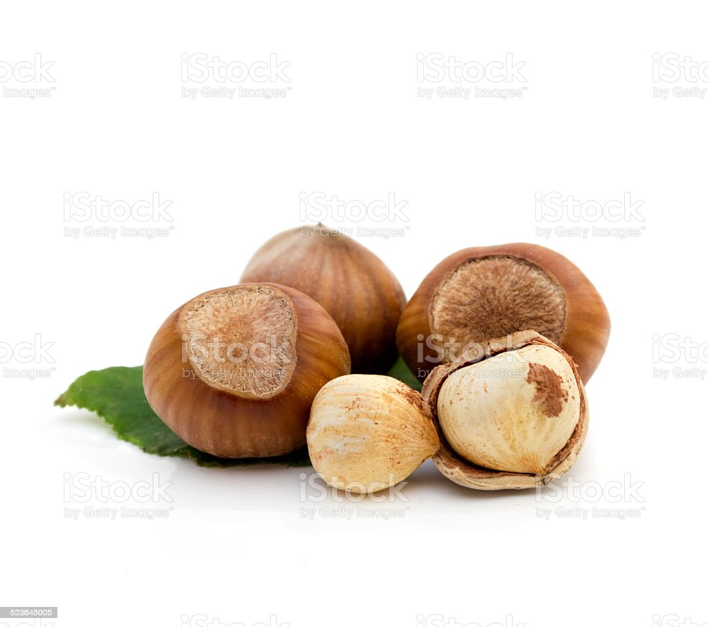 Group of hazelnut stock photo
