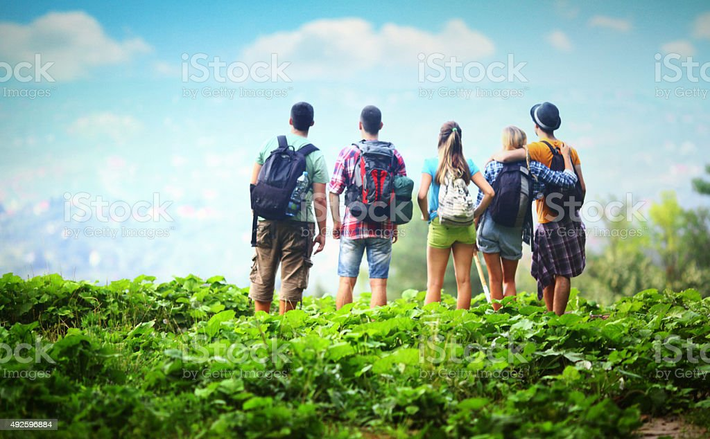 Group of hikers at viewpoint. stock photo