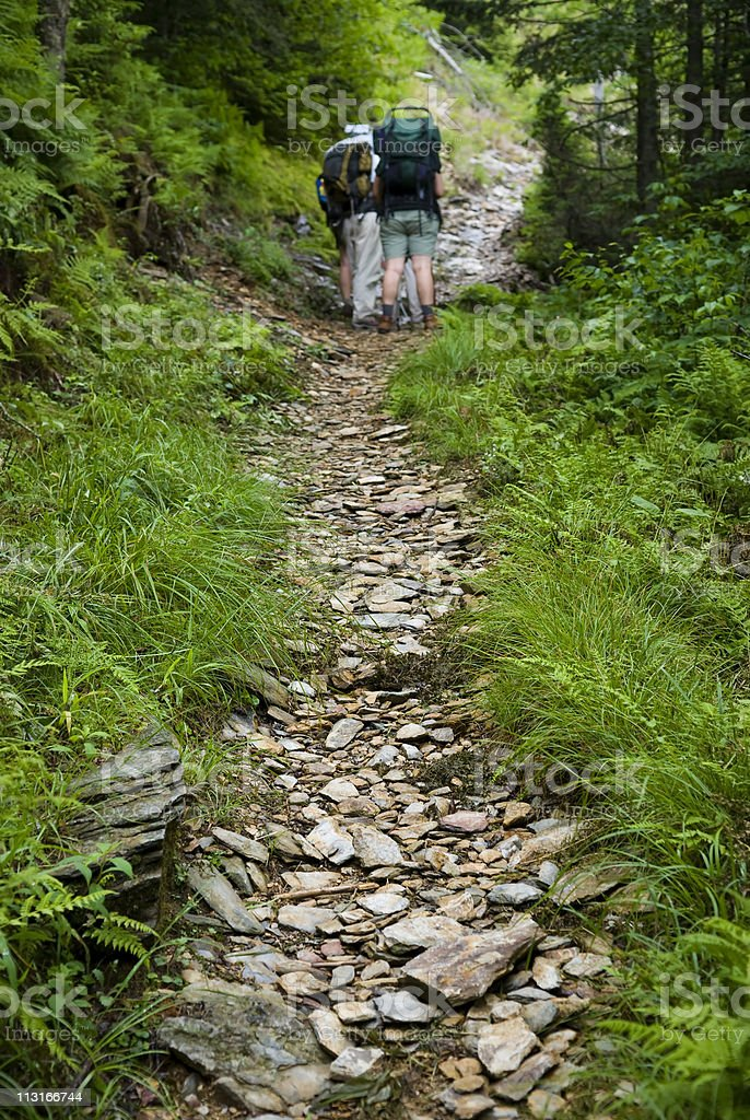 Hikers consult a map on trail in the Smoky Mountains royalty-free stock photo