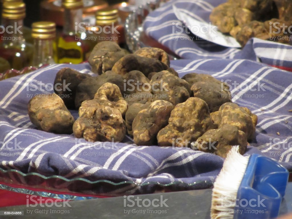 Group of italian expensive white truffles on the traditional canvas stock photo