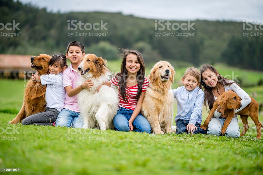 Group of kids with dogs stock photo