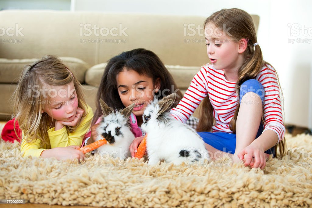 A group of friends lying on the floor at home stroking their pet...