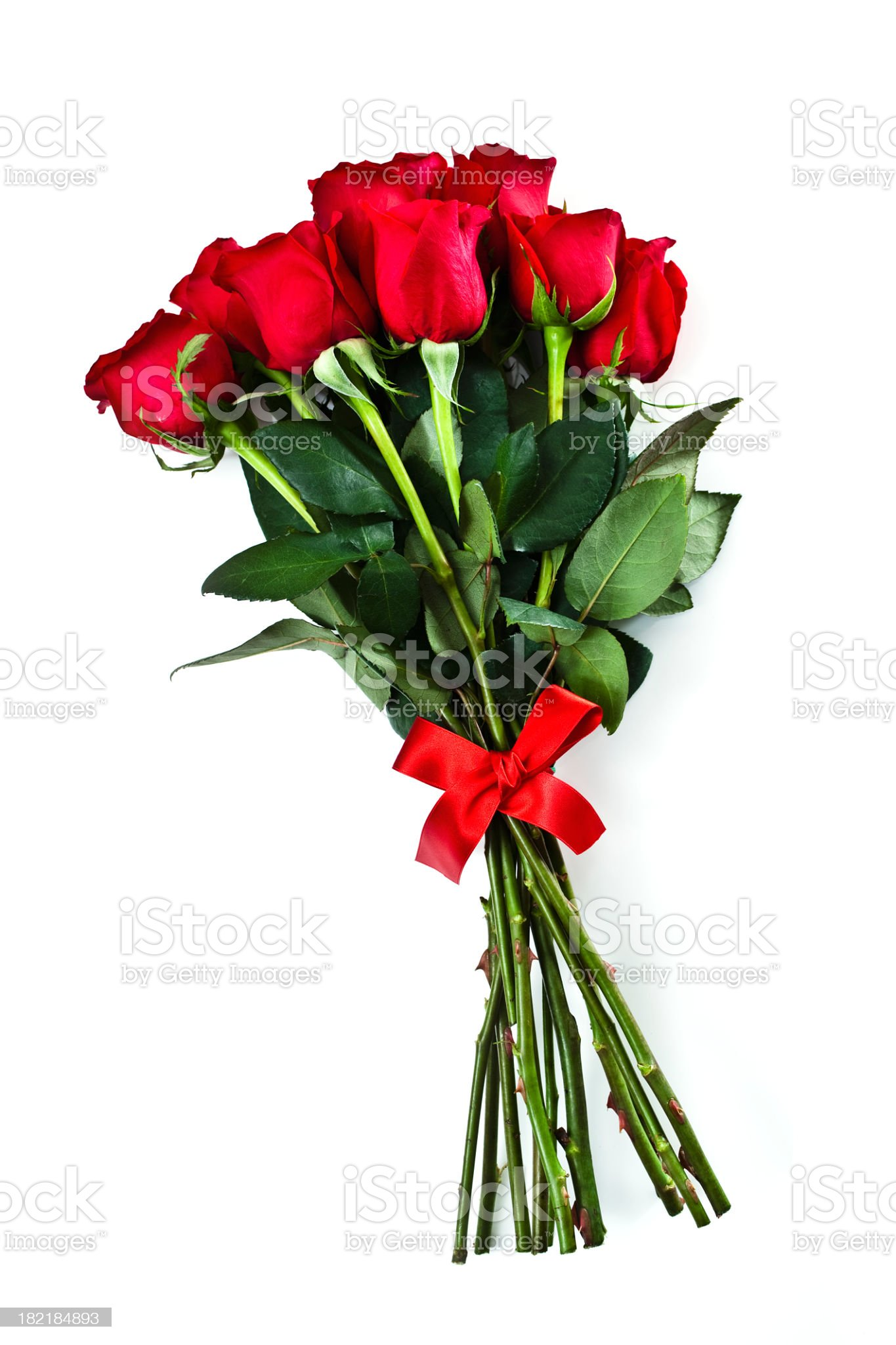 Group of long stemmed roses with red bow for Valentines Day royalty-free stock photo
