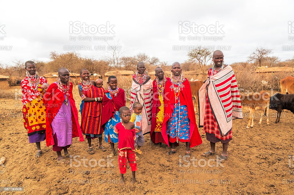 Group of Maasai women and children with cattle in village. stock photo