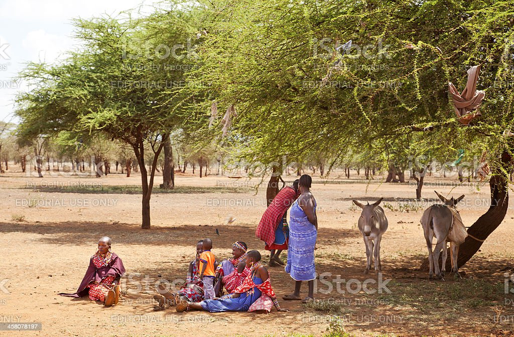 Group of maasai women with donkeys resting in the shadow stock photo