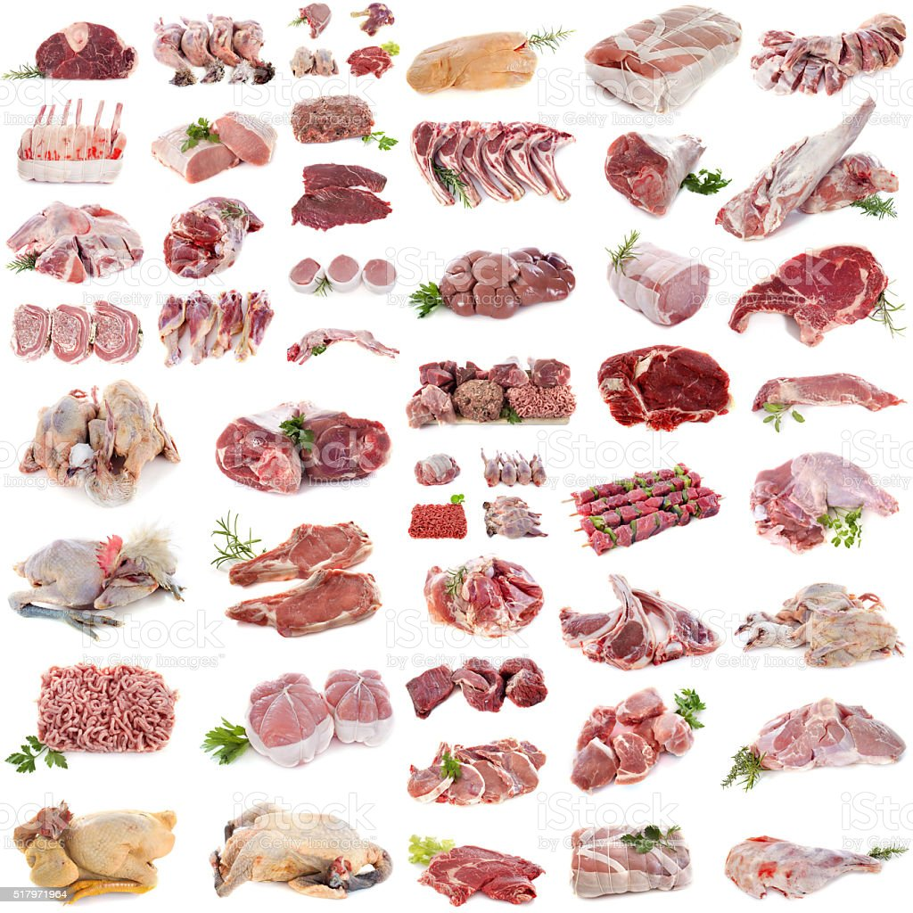 group of meat stock photo