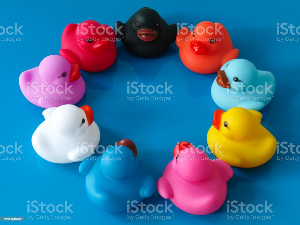 Group of multi-colored rubber ducks sit together in a circle on a reflective blue background. stock photo