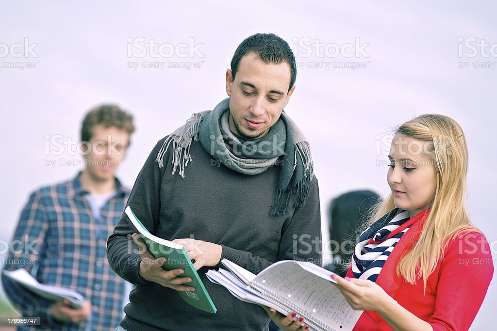 Group of Multiracial College Students royalty-free stock photo