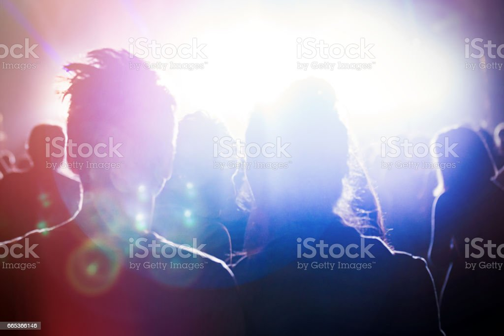 Group of people attending and partying at festival concert stock photo