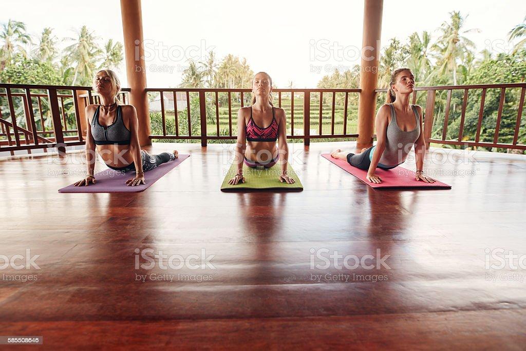 Group of people doing yoga stock photo