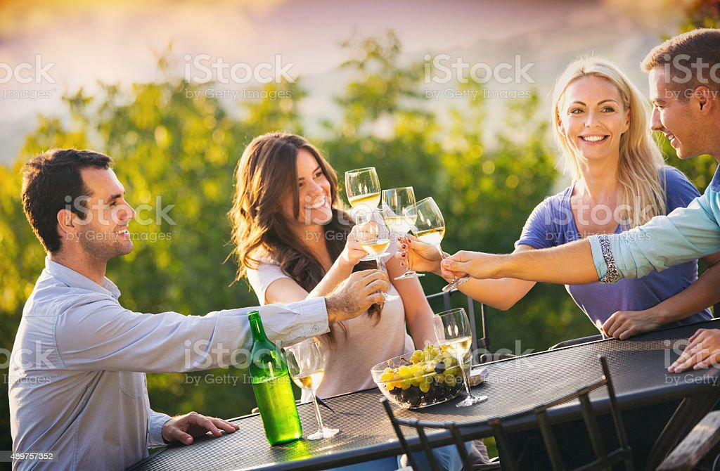 Group of people drinking wine outdoors. stock photo