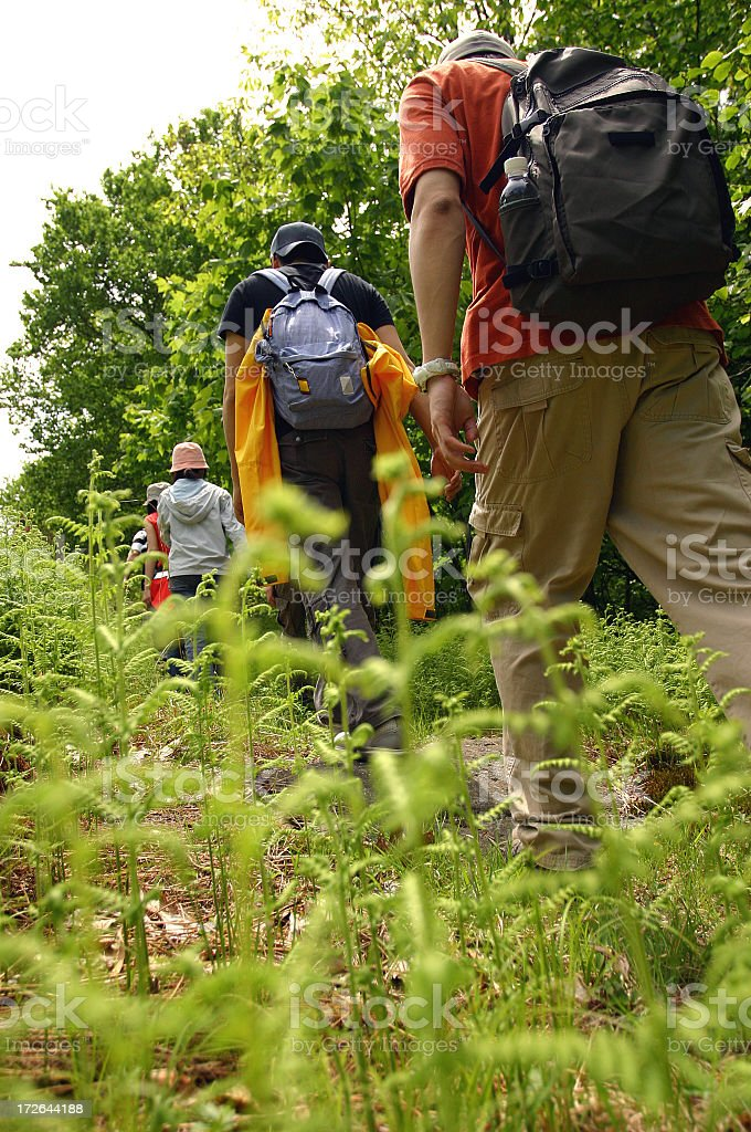 Group of people going Hiking through the forest stock photo