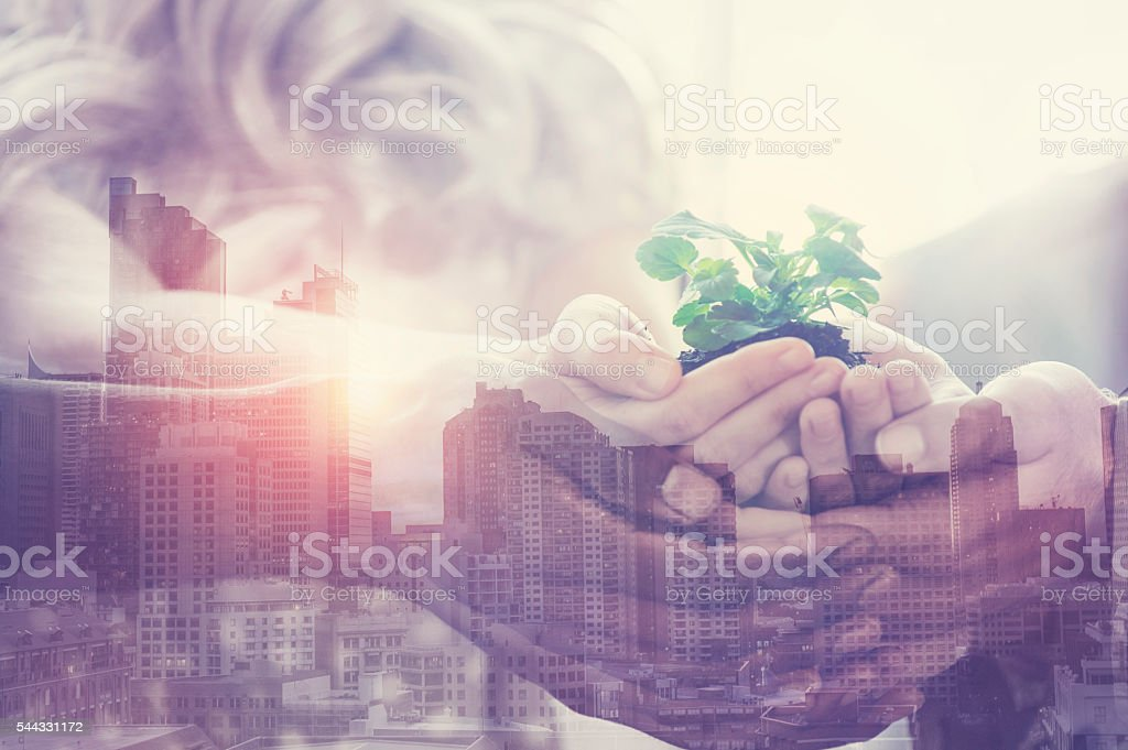 Group of  people holding a young plant. stock photo