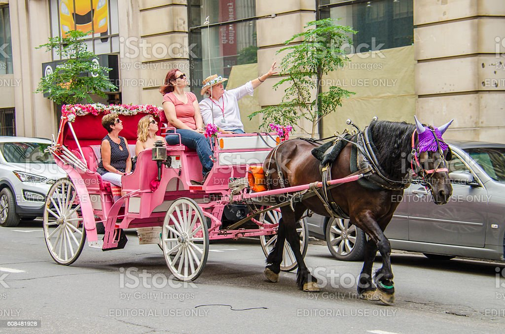 Group of people taking tour in pink horse carriage stock photo