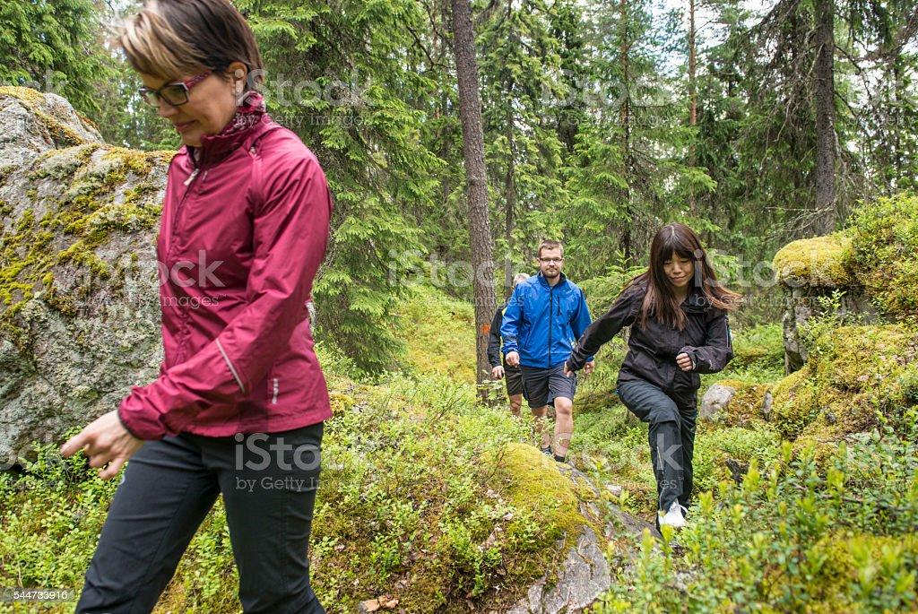 Group of people walking in forest. stock photo