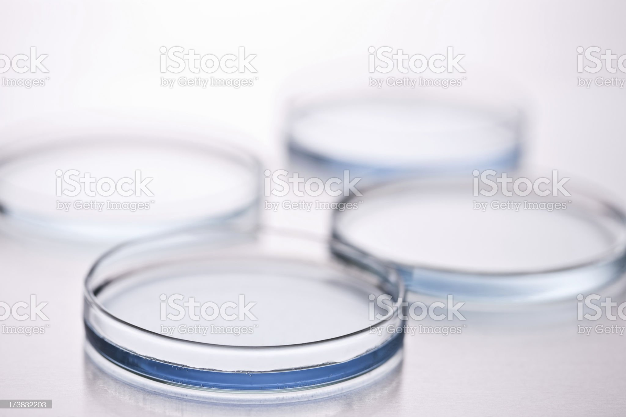 Group of petri dishes placed over isolated background royalty-free stock photo