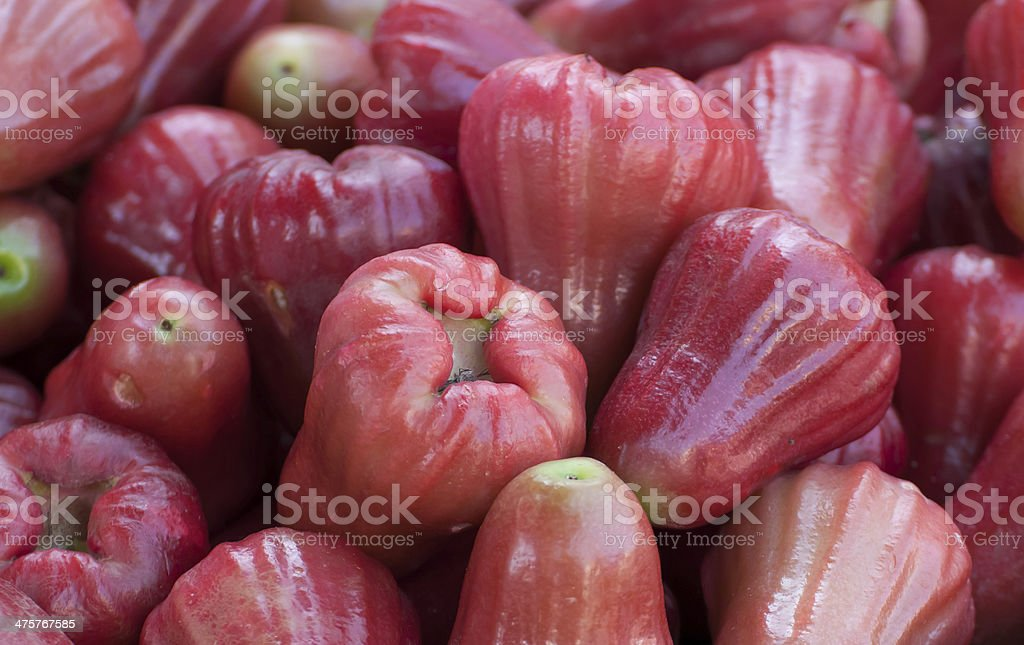 Group of Red rose apple stock photo