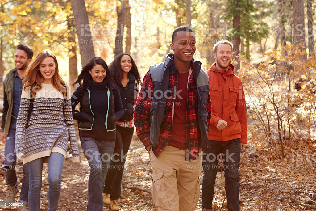Group of six friends hiking together through a forest stock photo
