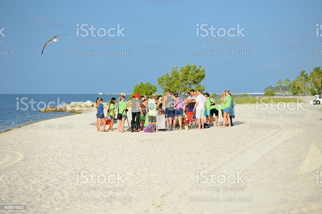 Group of spectators watching sea turtle egg survey stock photo