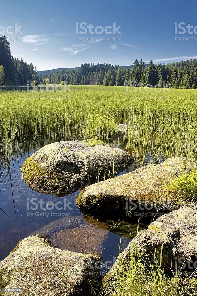 Group of stones by the lake royalty-free stock photo