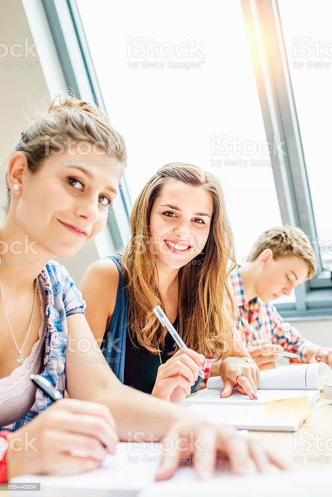 Group of Students Learning Together royalty-free stock photo