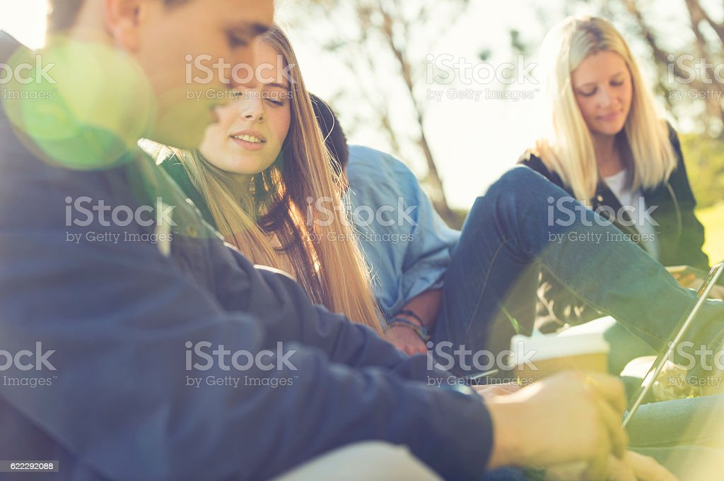 Group of students using technology in the park. stock photo