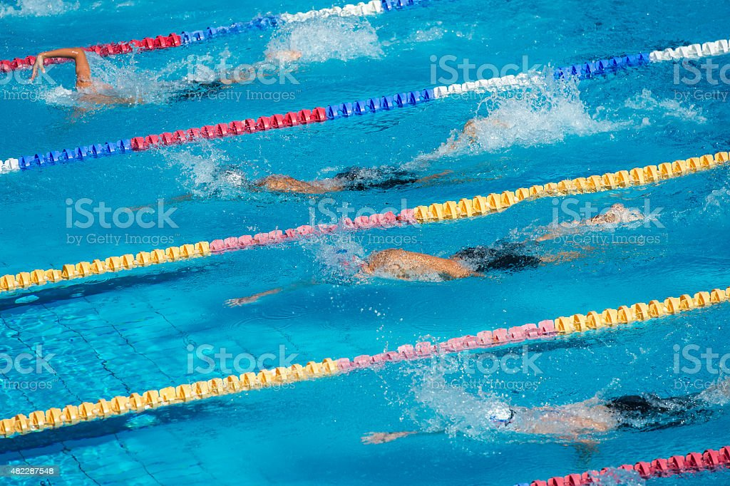 Group of Swimmers During the 100m Crawl Race stock photo