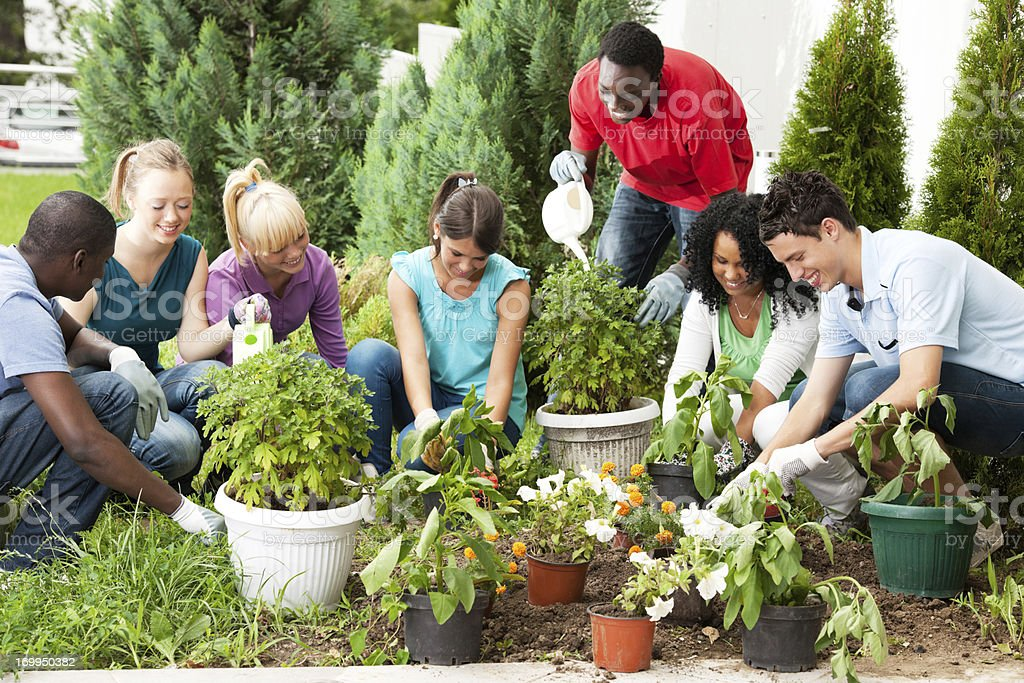 Group of teenage friends gardening. stock photo