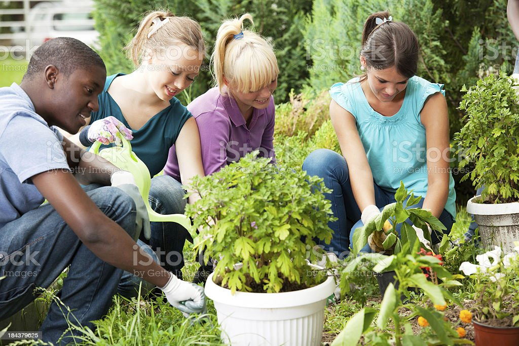 group of teenage friends gardening royalty free stock photo