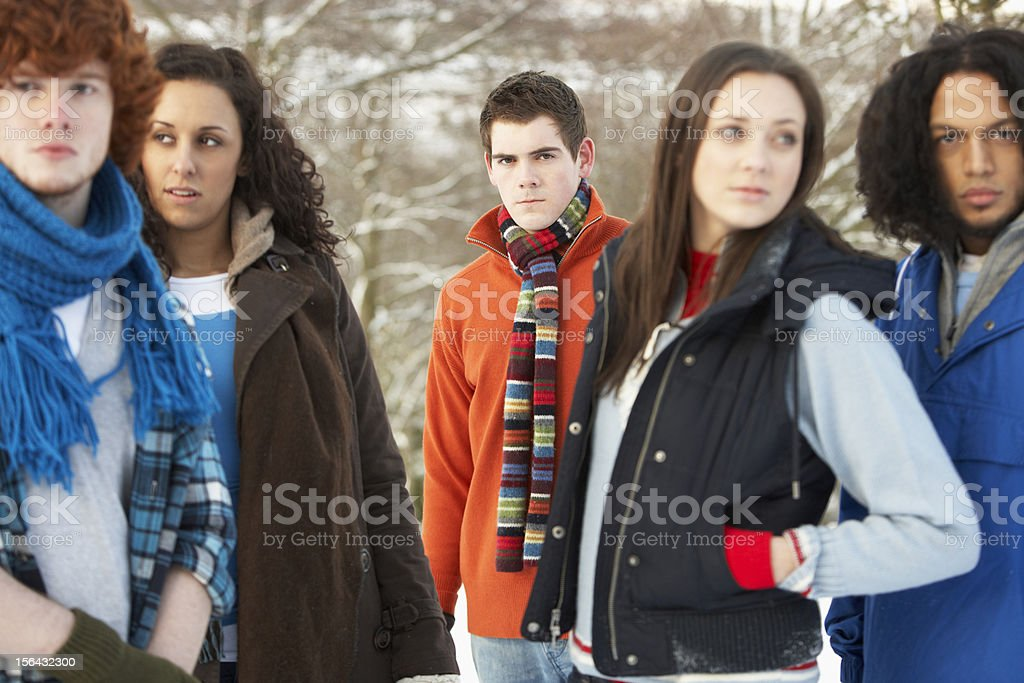 Group Of Teenage Friends In Snowy Landscape stock photo