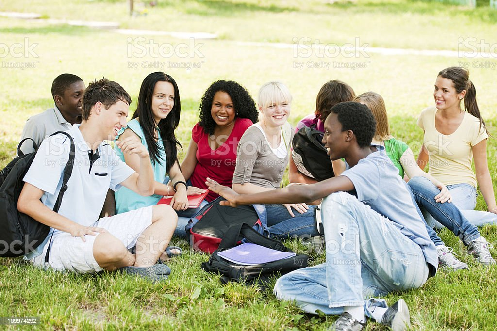 Group of teenage friends sitting in the park. royalty-free stock photo