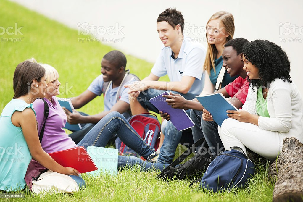 Group of teenage students sitting in a park on grass. royalty-free stock photo