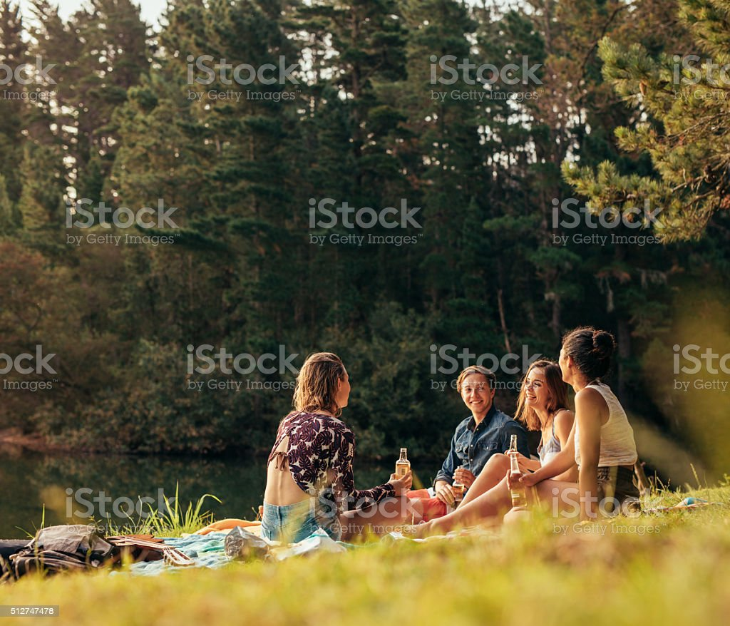Group of teenagers having a picnic on the lake stock photo