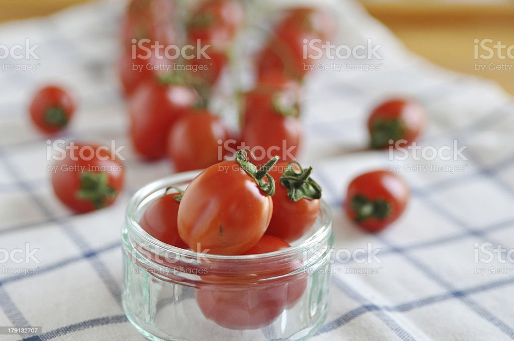 Group of tomatoes royalty-free stock photo