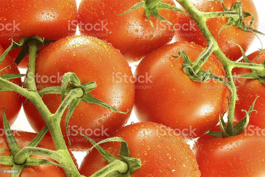 Group of Vine Tomatoes stock photo