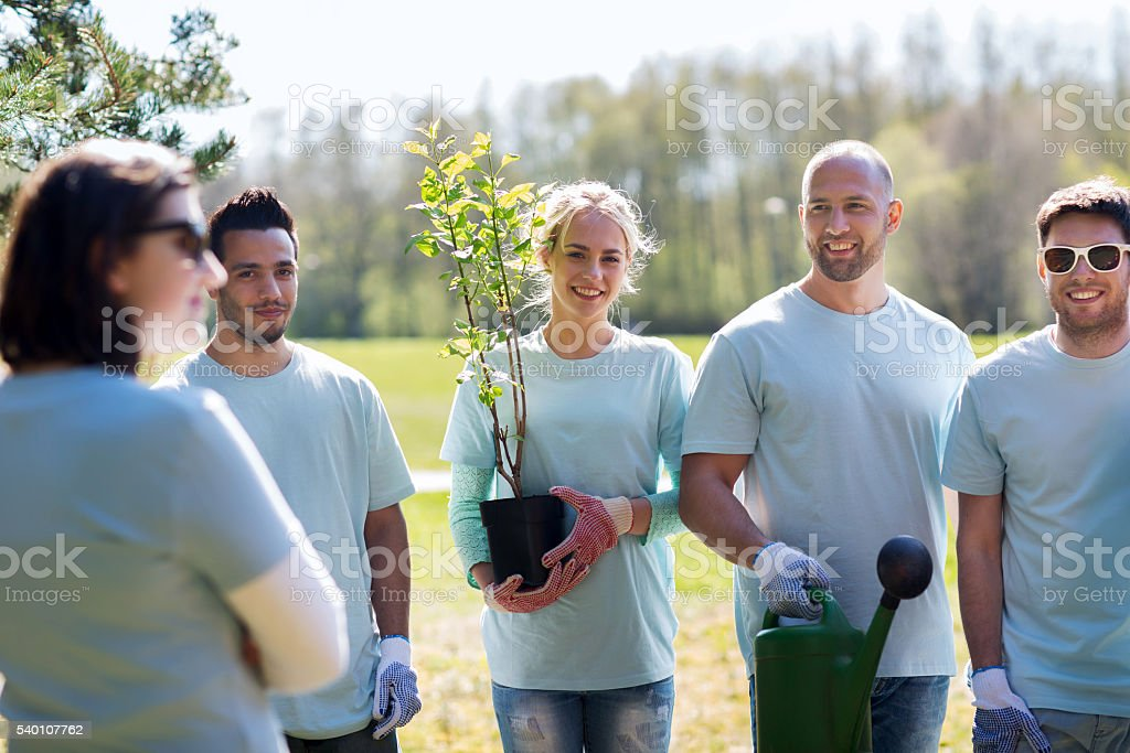 group of volunteers with tree seedling in park stock photo