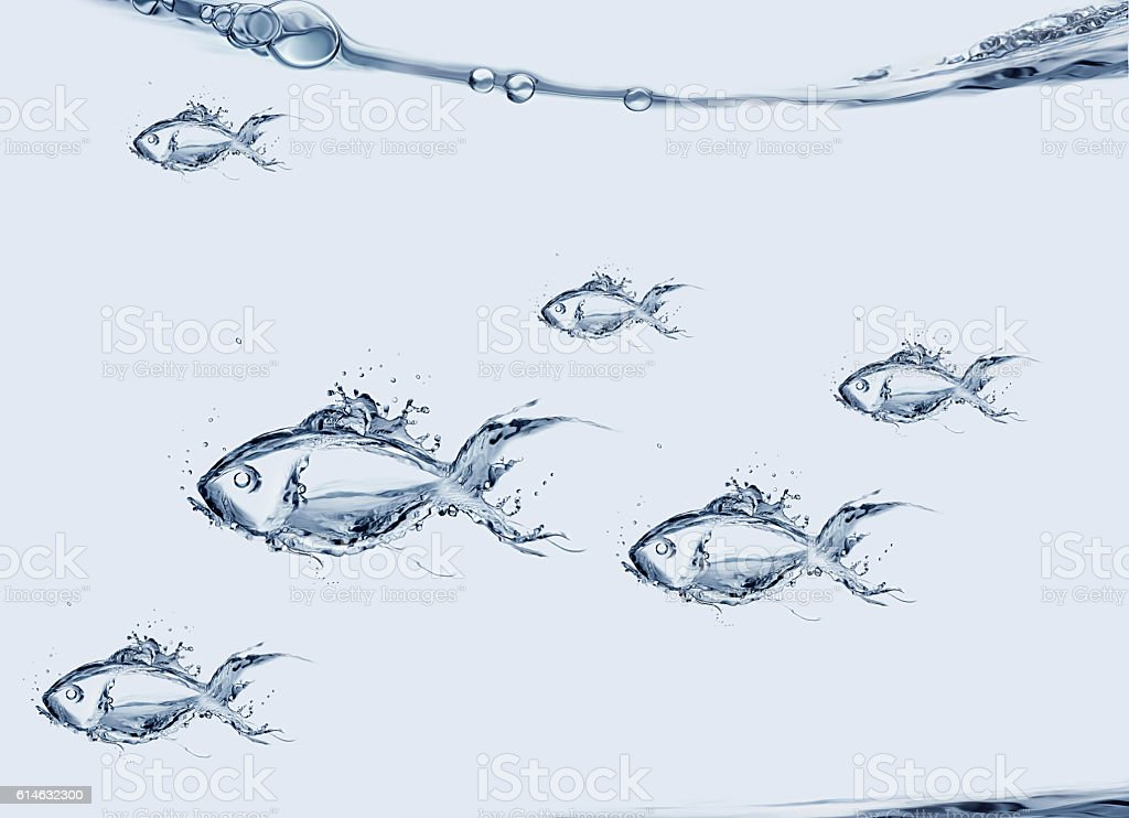 Group of Water Fish Swimming royalty-free stock photo