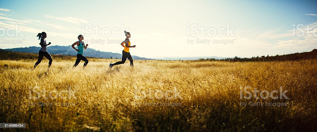 Group of Women Running in Nature Area stock photo
