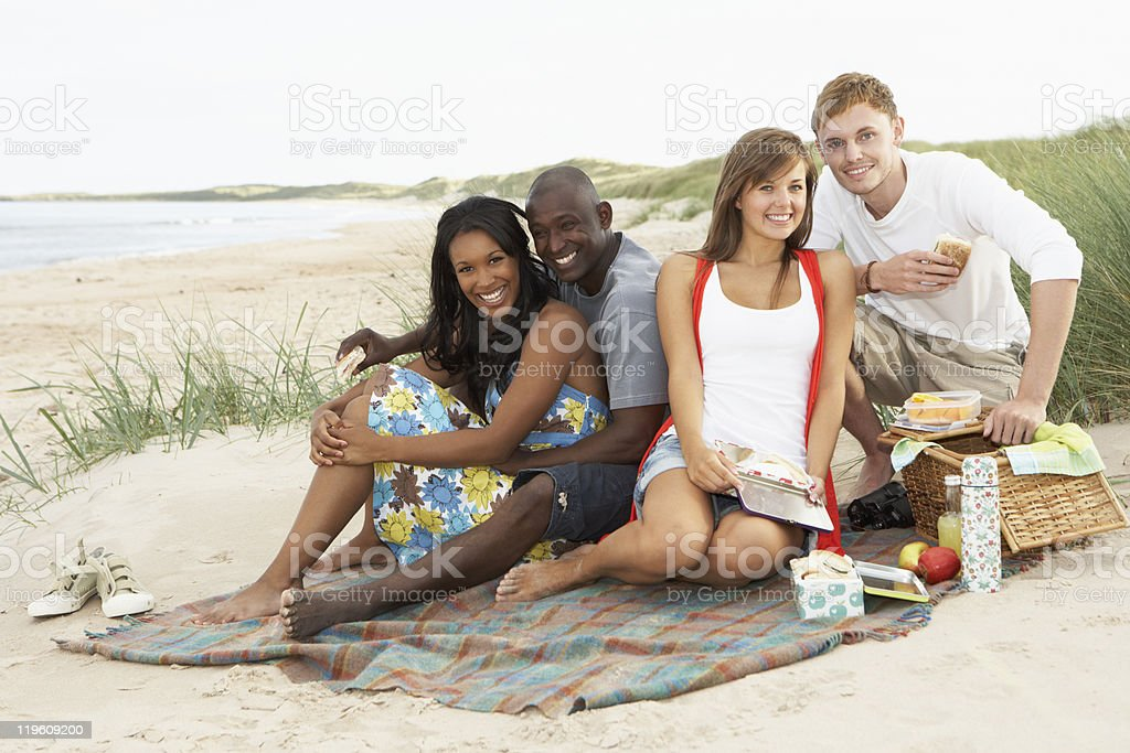 Group Of Young Friends Enjoying Picnic On Beach Together stock photo